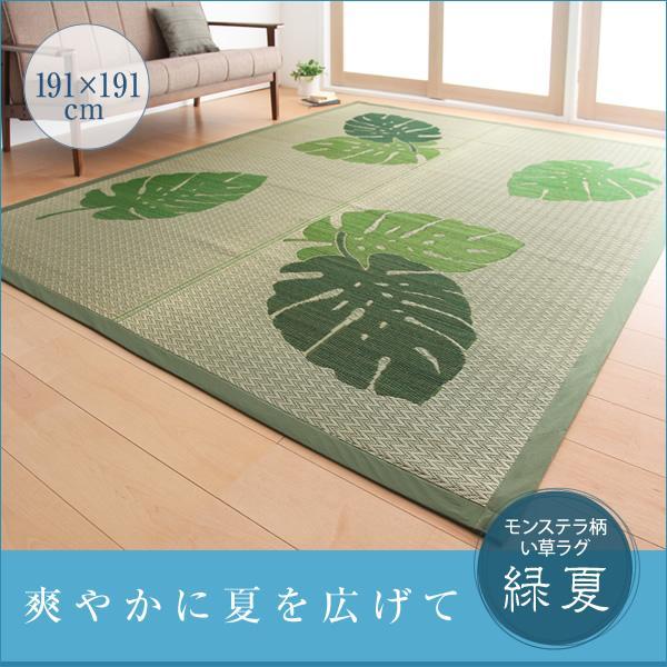 【い草】モンステラ柄い草ラグ 【緑夏】 りょくか 191×191cm